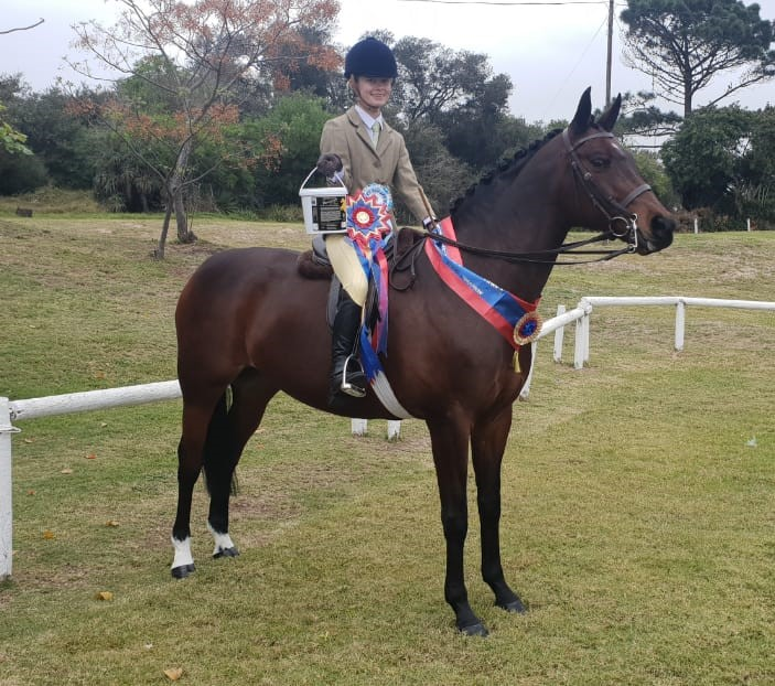 Open Junior Working Riding Horse Champion